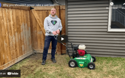 Why You Shouldn't Power Rake A Wet Lawn